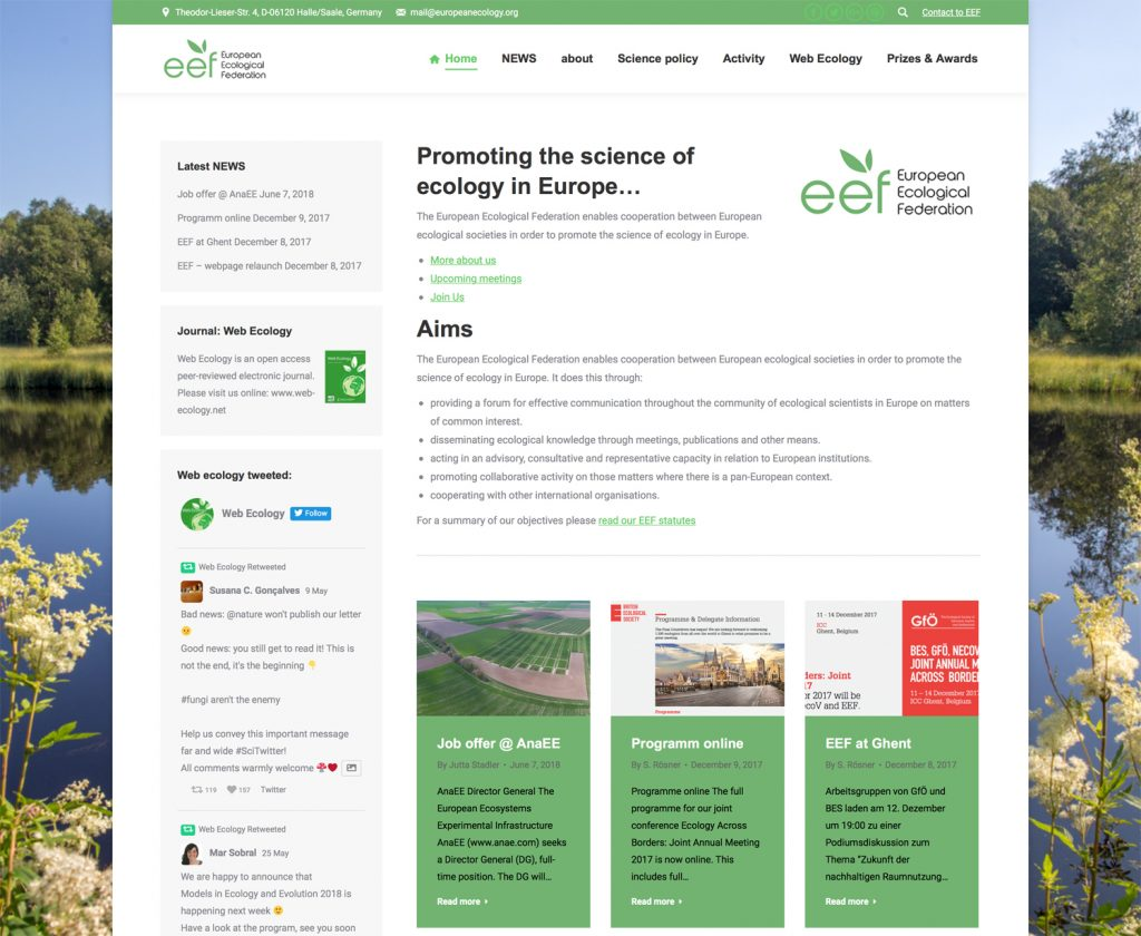 EEF Relaunch Webpage.